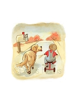 Golden Retriever And Little Boy On Tricycle